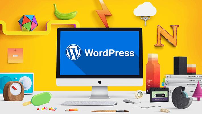 WordPress Tema Nedir?
