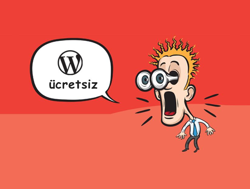 Sitenizde Neden WordPress Kullanmalısınız?