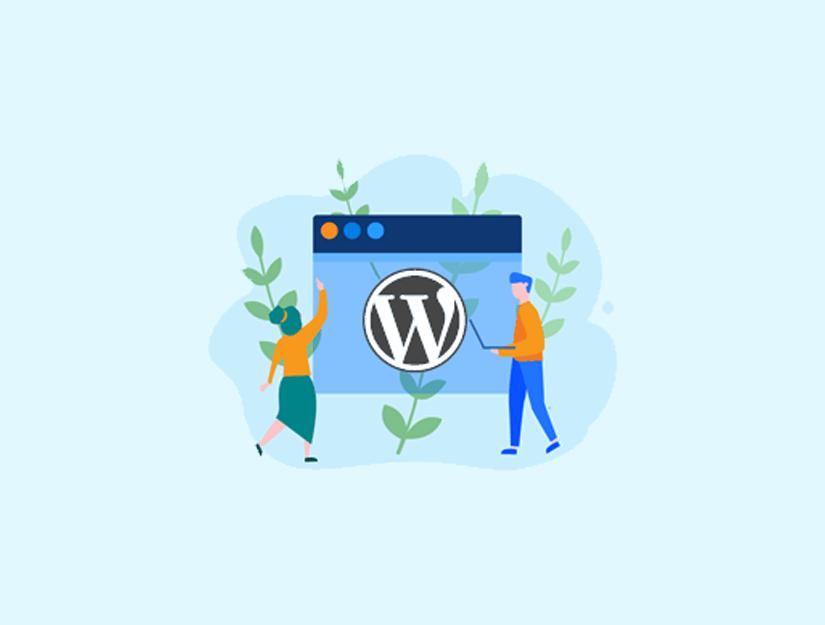 WordPress Manuel Güncelleme