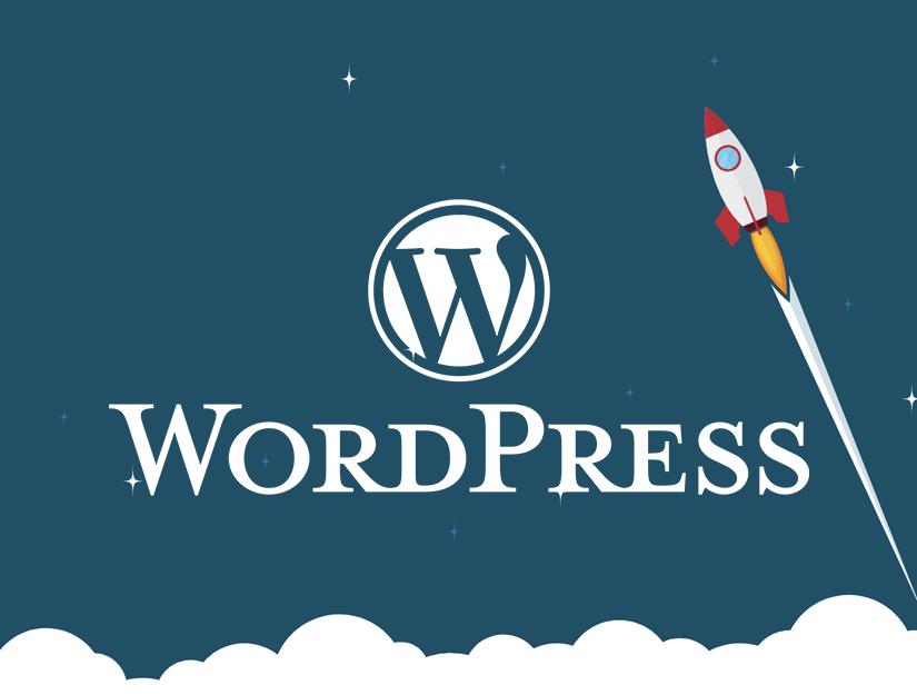 WordPress Eklenti Nedir?