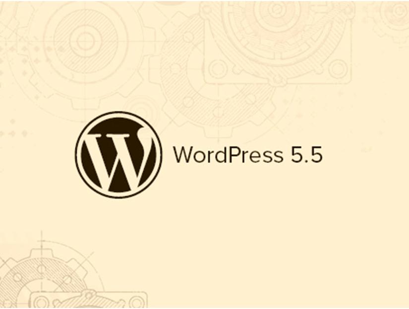 WordPress 5.5 Yenilikleri