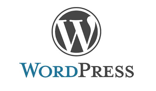 WordPress Tema Seçimi – Dikkat Etmeniz Gereken 15 Önemli Nokta